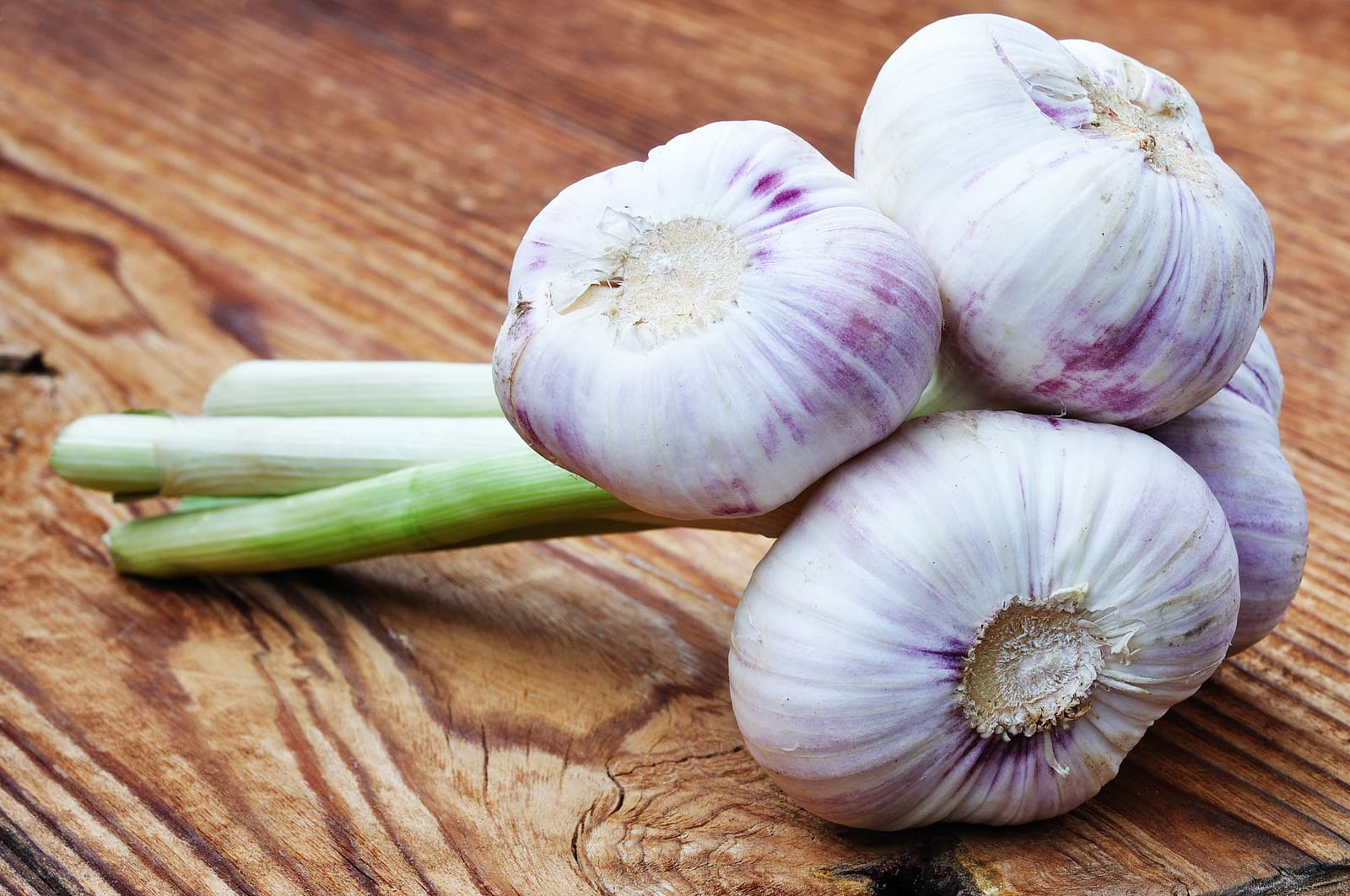 how to keep fresh garlic from sprouting