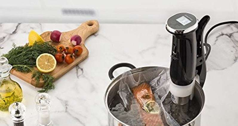 Gourmia Sous Vide Reviews